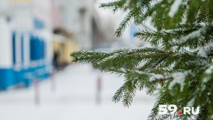 Тепло и снежно: рассказываем о погоде на выходные в Перми и крае