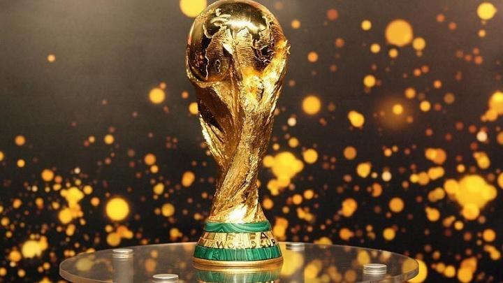 В Ярославль привезли кубок FIFA: вход свободный