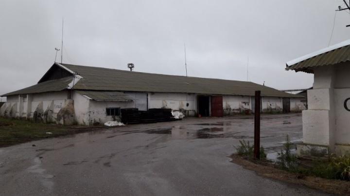 Под Волгоградом из-за протекшей крыши элеватора фермер потерял 220 тонн лука
