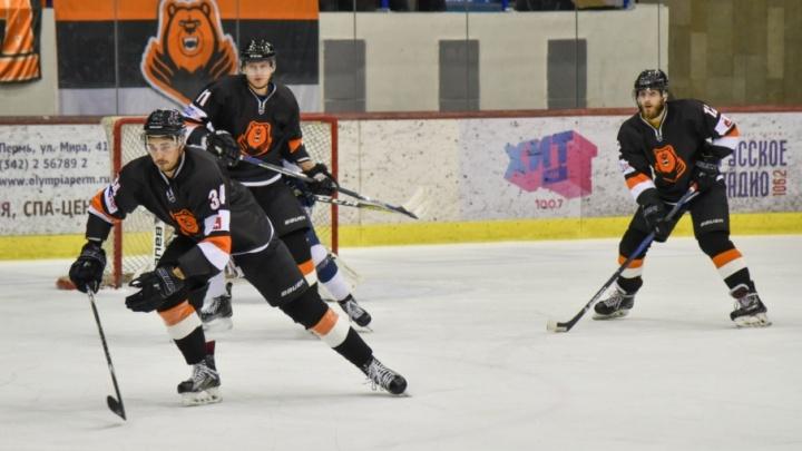 «Молот-Прикамье» в 1/8  финала плей-офф проиграл хоккейному клубу из Санкт-Петербурга
