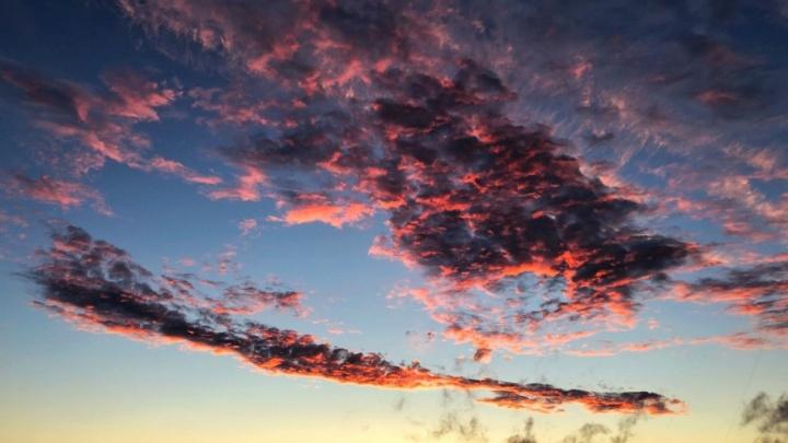 «Посмотри, небо нереальное!»: смотрим фото нежно-розового заката, который привел тюменцев в восторг