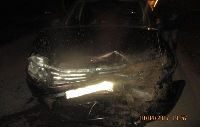 Пьяный ярославец покалечил подростка, съехав в кювет на машине