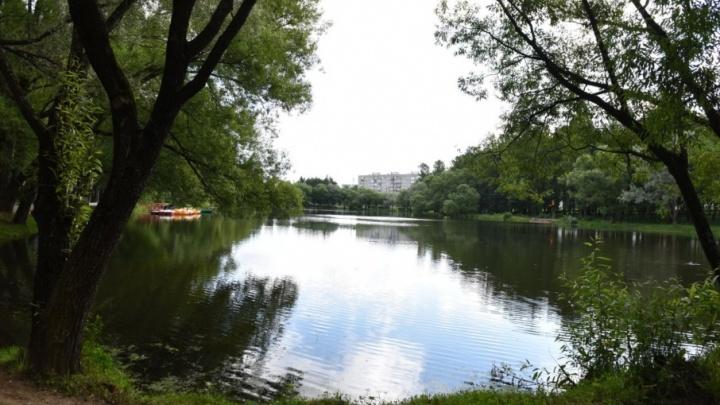 Ярославский парк «Нефтяник» полностью обновят к началу осени