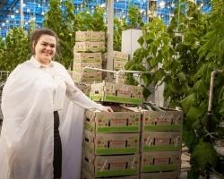 В Чурилово выращивают… специалистов