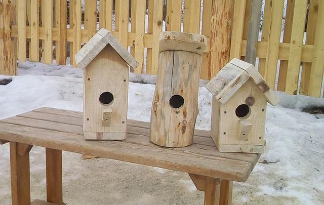 Челябинцы решат квартирный вопрос для птиц