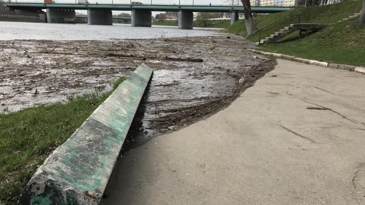 Мэрия Ярославля: уровень воды в городе далек от критической отметки
