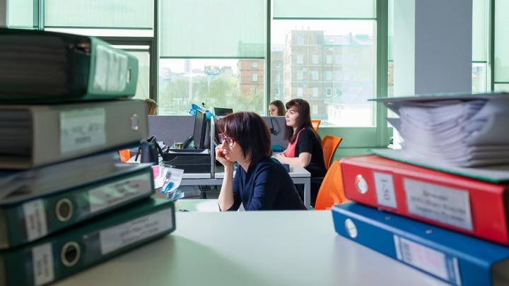 Челябинские предприниматели сэкономят на аренде офисов в 2017 году