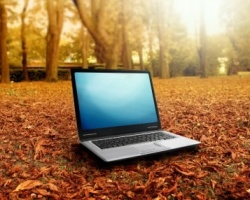 «Дом.ru»: около 70% интернет-пользователей использует публичный Wi-Fi