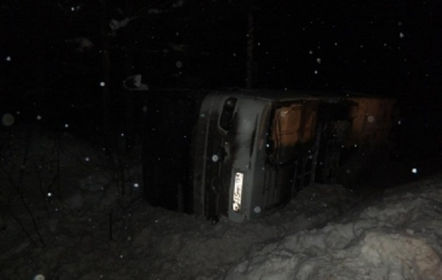 Перевозчик, автобус которого перевернулся на дороге из Устюга в Пермь: «На трассу выбежала лиса»