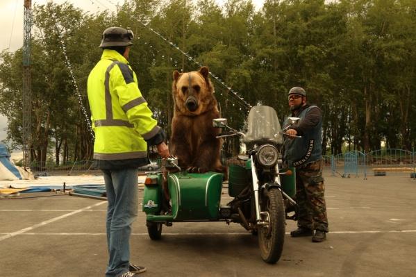 Тима готовится к поездке по Архангельску