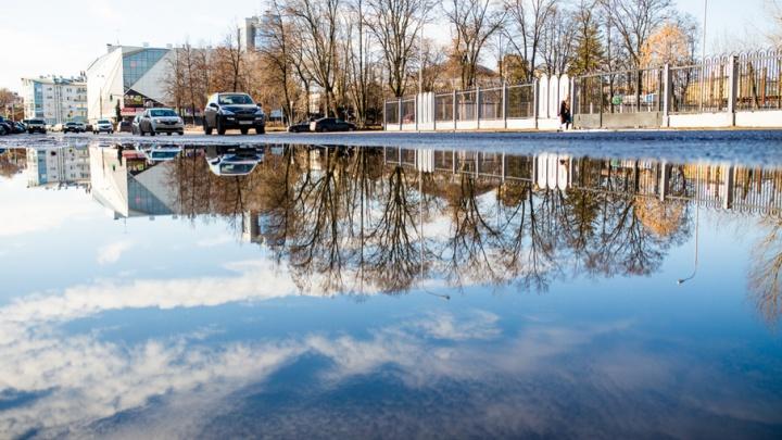 В Ярославле на праздничные выходные придут холода