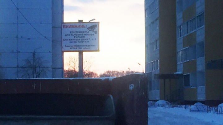 Ярославцев, бросающих мусор в чужой контейнер, оштрафуют