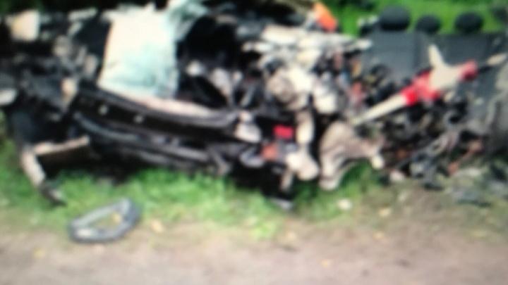 Жестокая смерть: в Ярославской области водитель Mercedes влетел в столб