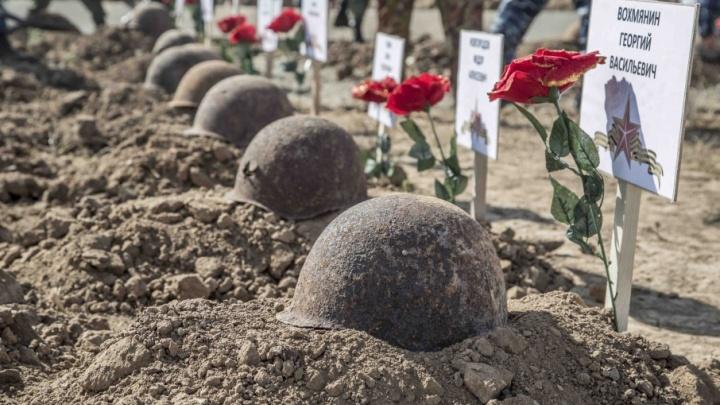 Поисковики под Волгоградом подняли останки 70 советских бойцов