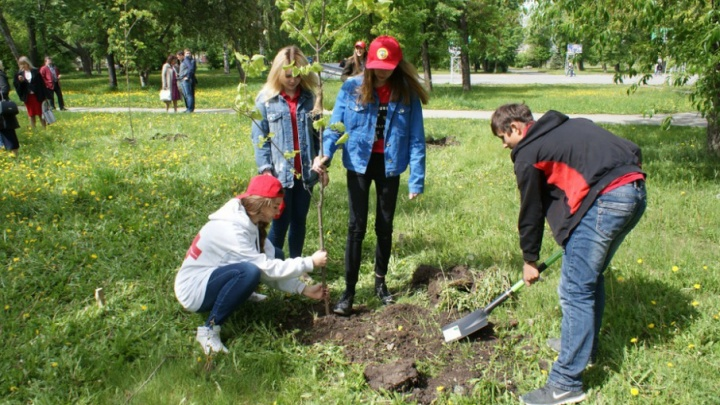 Трудовые лагеря: сколько сможет заработать за лето челябинский школьник
