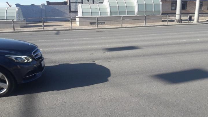 Взяли на исследование керны: специалисты «продырявили» асфальт на Московском шоссе