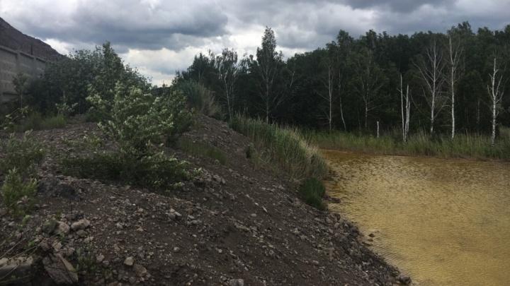 Челябинских садоводов встревожили «жёлтые озёра», стекающие в Каштакский бор