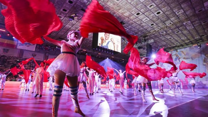 На проект реконструкции ростовского Дворца спорта потратят 51 млн рублей