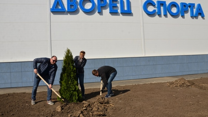 В День древонасаждения в Аксайском районе посадили более 2000 деревьев и 1000 кустарников
