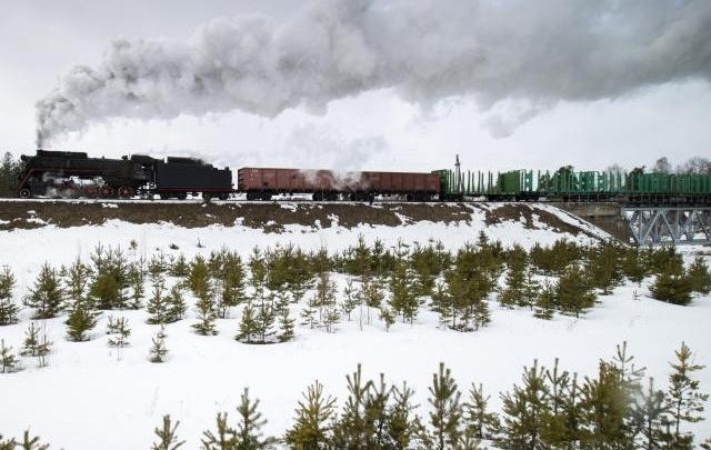 Товарняк задавил пенсионерку на перегоне под Челябинском