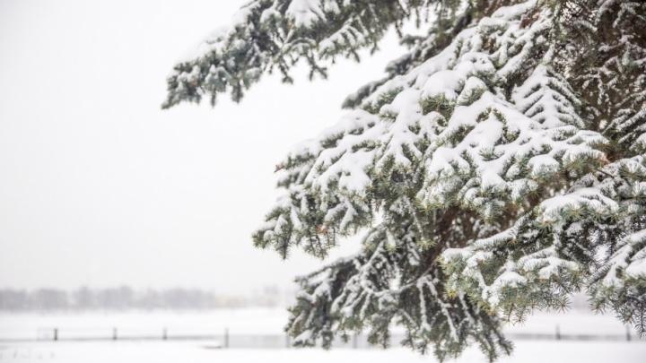 Зима возвращается: синоптики напугали морозами и снегом