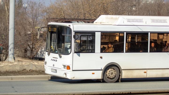 Автобусы совершат пробные рейсы по дачным маршрутам в выходные