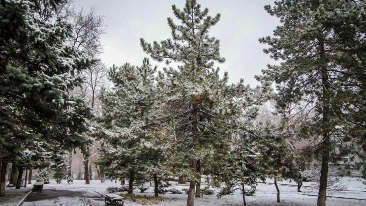 Зима наверстывает упущенное: конец февраля в Ростове будет морозным и снежным
