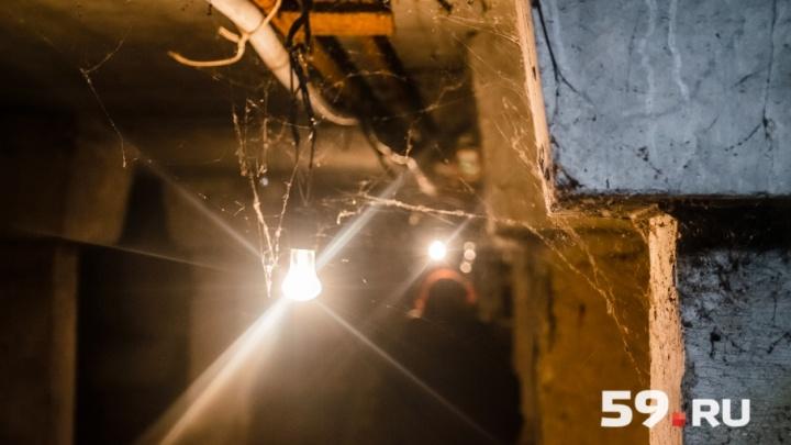 Жильцам более 300 домов в Перми собираются отдать в собственность подвалы и чердаки. Карта с адресами