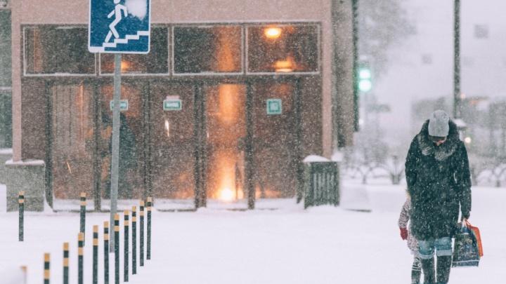 Снова метель, сильный ветер и снегопад: тюменцев предупреждают о непогоде в среду