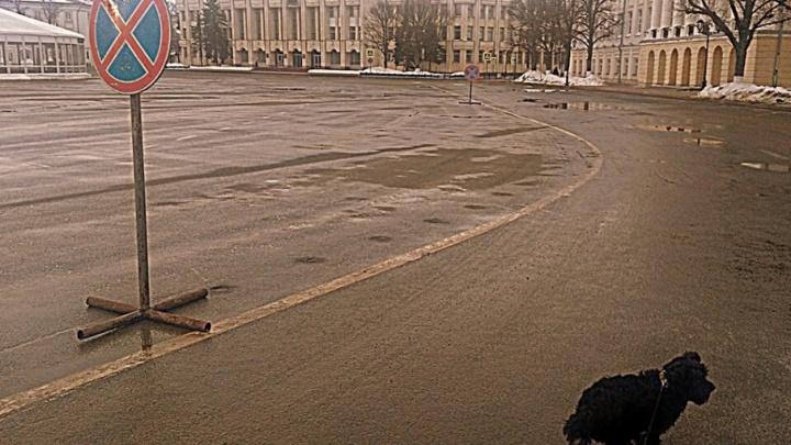 Как в старые времена: на Советской площади в Ярославле запретили парковку