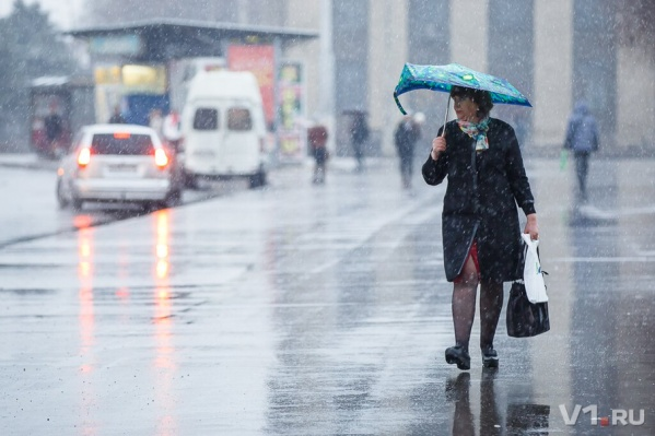 На выходных горожане не расстанутся с зонтами