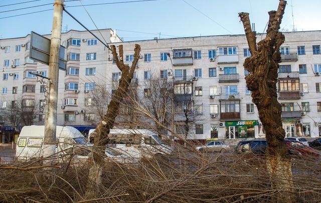Волгоград приближается к пятерке лидеров конкурса «Аллея Славы»