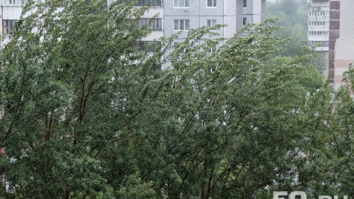 «Отложите прогулки»: в Прикамье сегодня ожидается град, гроза и штормовой ветер