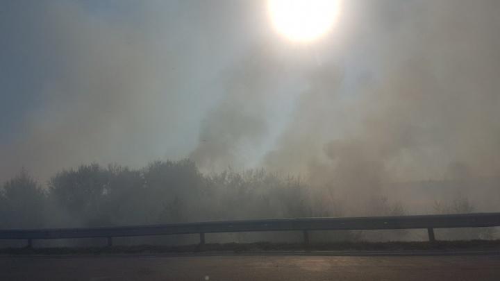 Между Ростовом и Батайском снова загорелся камыш