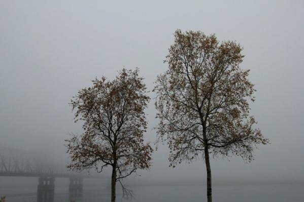 Дождь и ветер – такой будет эта пятница