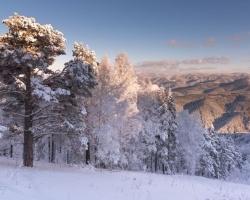 «Зима в Белокурихе»: преимущества зимнего курорта для всей семьи