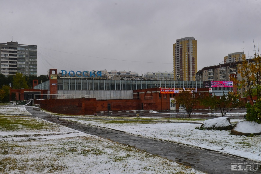 Судя по архитектуре, КОСК так и остался в советском времени. А вон и яркая вывеска о том, что здесь проходят выставки кошек.