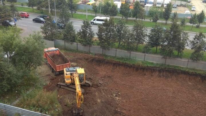 Новый офисный центр вместо деревьев: челябинцы спасаются от очередной «уплотниловки»
