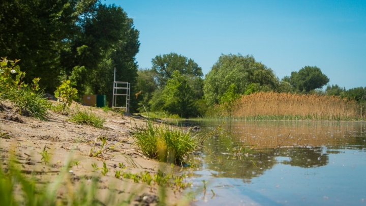 В реке Темерник нашли человеческие ноги