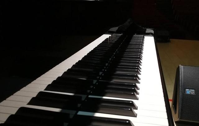 В Ростове для колледжа искусств купят концертный рояль почти за 10 млн рублей