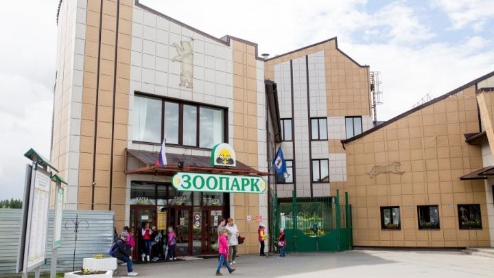 В ярославском зоопарке хотят построить слоновник