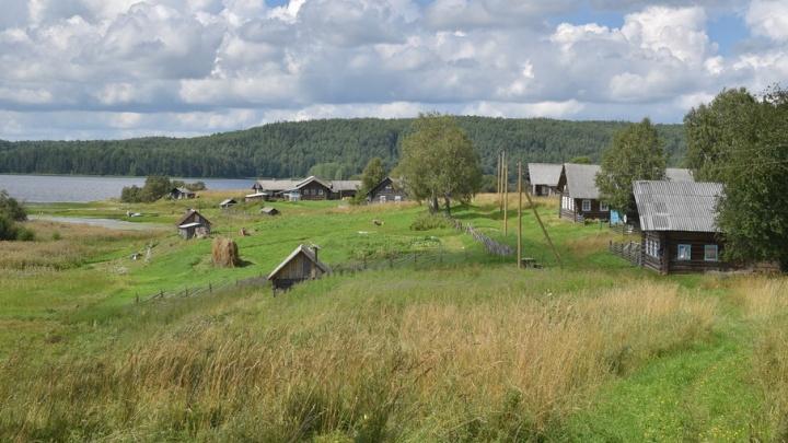 Деревню в Кенозерье переведут на возобновляемые источники энергии