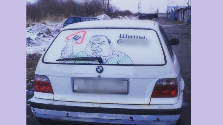 Тюменская художница создала свой вариант предупреждающего знака «Шипы»