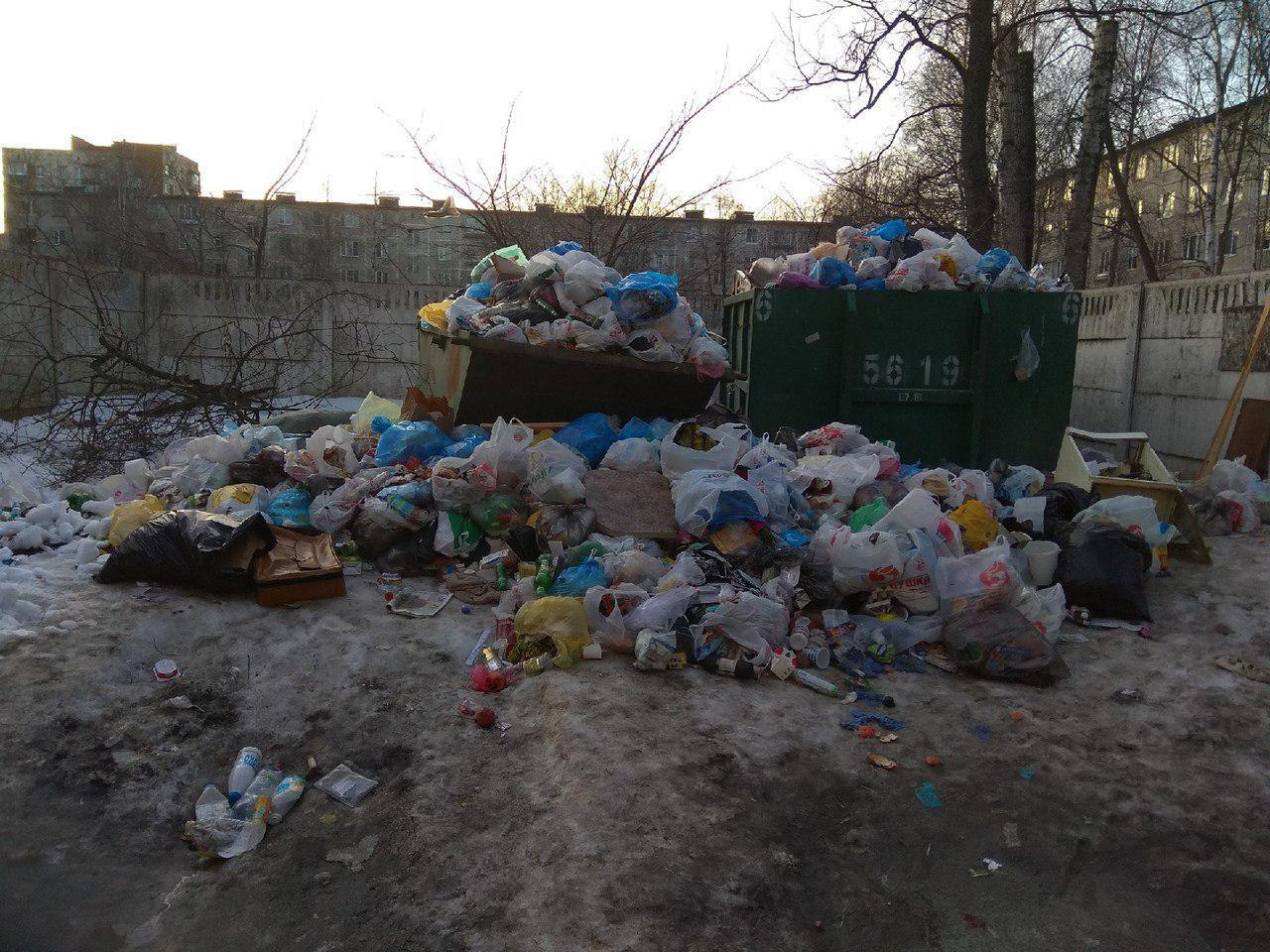 """Читательница """"Фонтанки"""" Юля: В Невском районе жкс 2 плохо вывозят мусор с помоек. Во дворе дома 98 по Народной улице."""