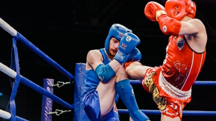 В Челябинске стартовал чемпионат России по тайскому боксу среди студентов