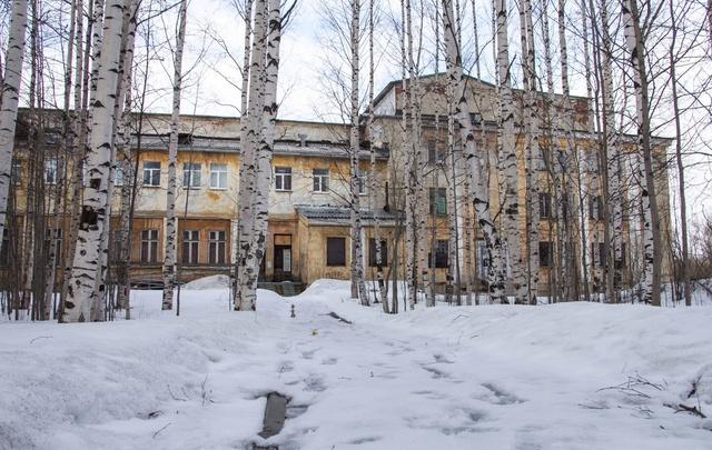 Туя, боярышник да курильский чай: в Архангельске подвели итоги конкурса на благоустройство