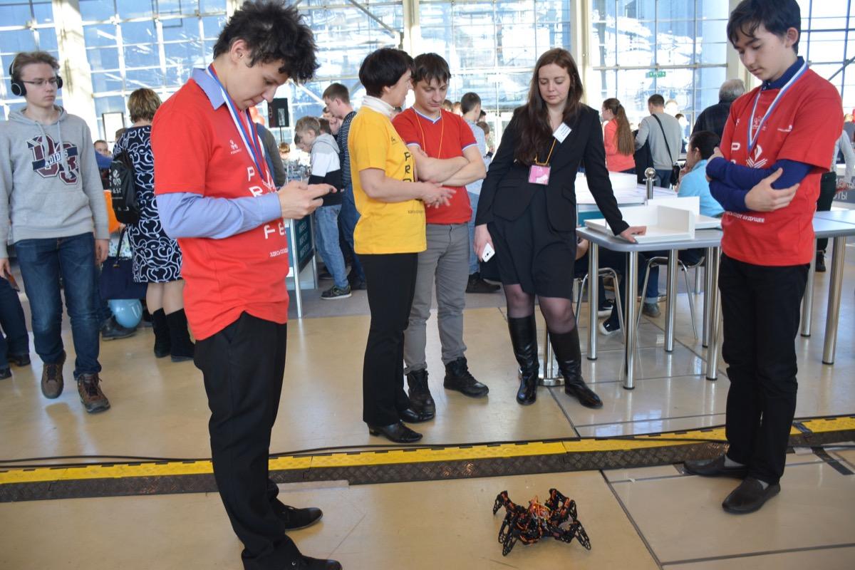 Робот-муравей заинтересовал гостей фестиваля