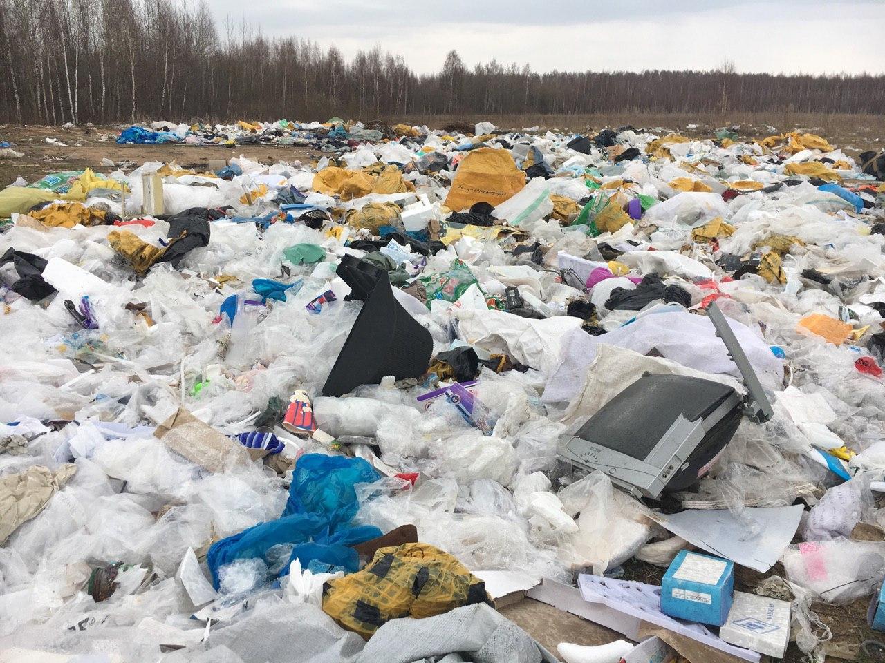 Местные жители уверяют, что мусор сюда везут самосвалами со строек