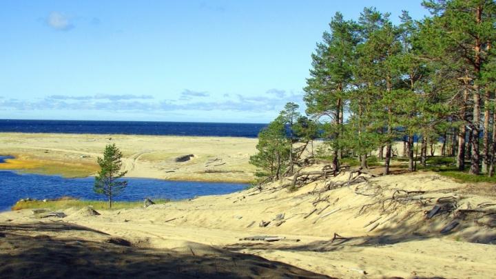Нацпарк «Онежское Поморье» может получить статус геопарка ЮНЕСКО