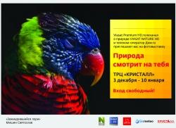 Фотовыставка «Природа смотрит на тебя» открылась в Тюмени